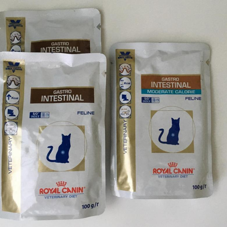 Корм Royal Canin Gastro Intestinal для кошек