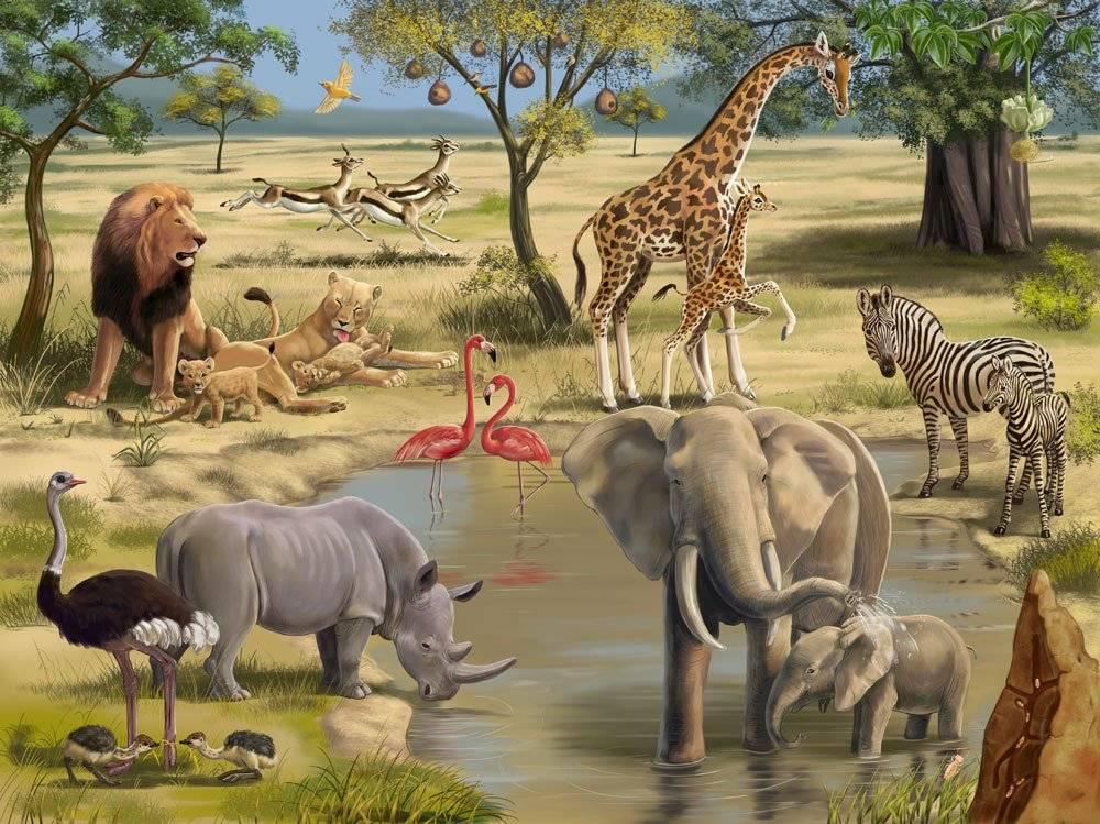5 животных, от которых зависит жизнь всей фауны