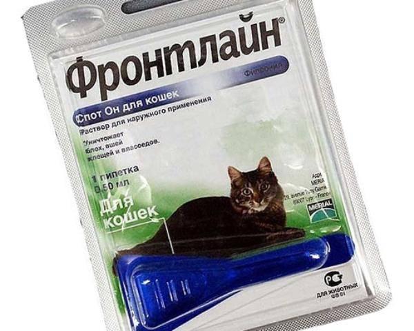 Капли от блох для кошек: средство, таблетки