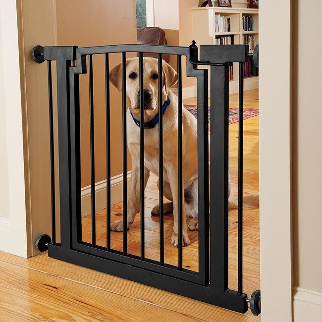 Барьер для собак: перегородка в квартиру