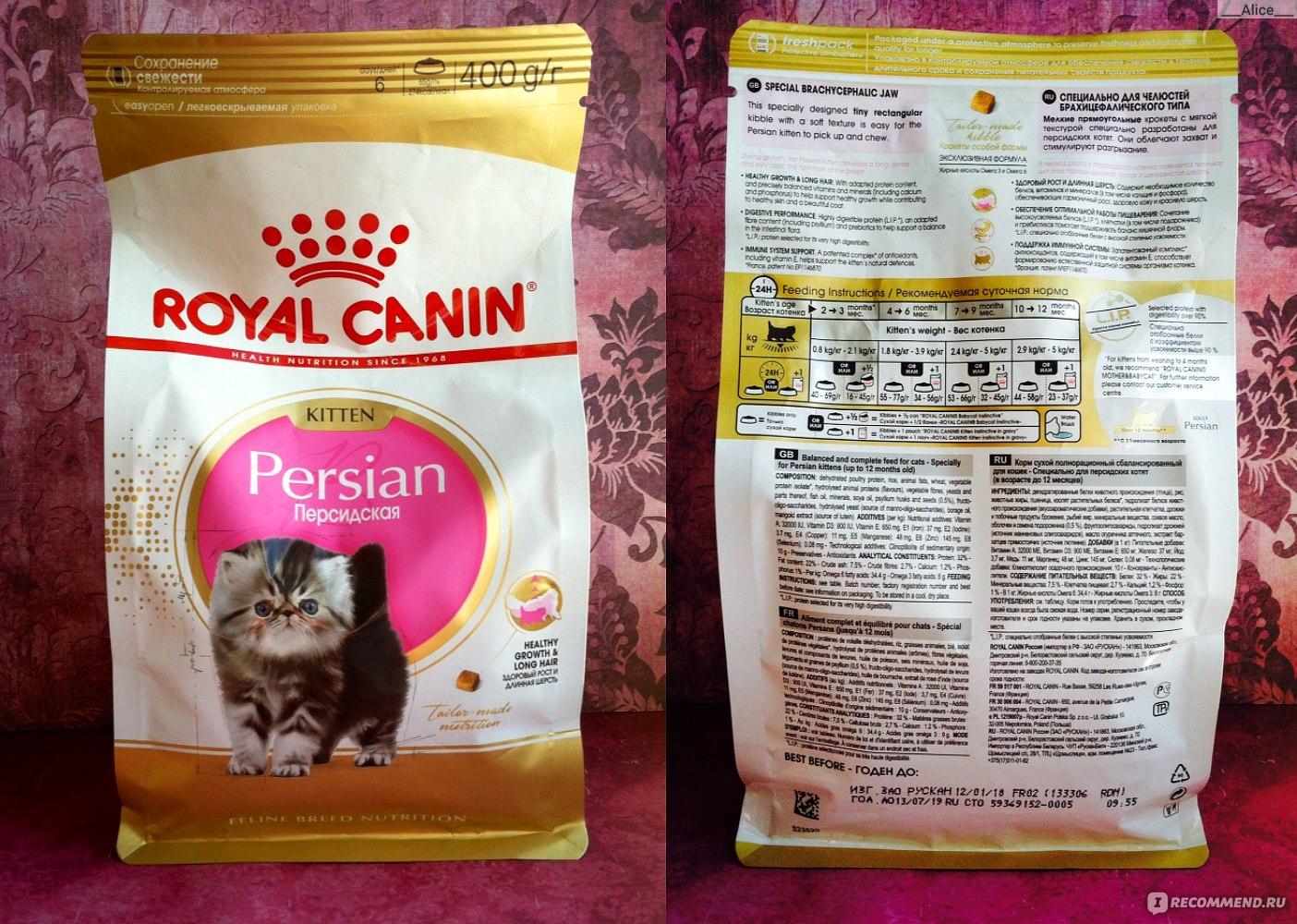 Обзор корма «Роял Канин» для кошек