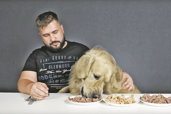Что будет с человеком, если он попробует собачий корм
