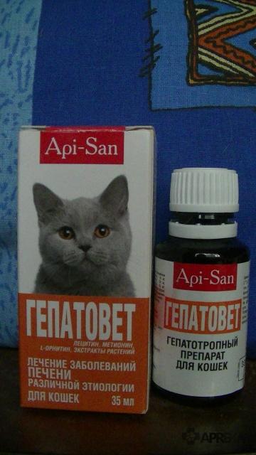 Слабительное для кошек в домашних условиях