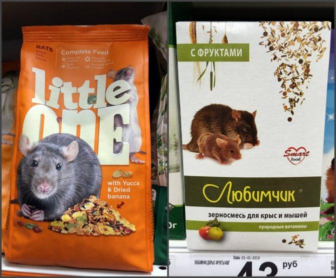 Что едят крысы в домашних условиях и дикой природе