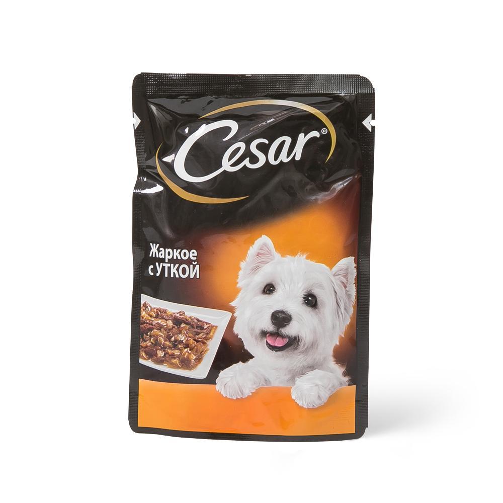 Корм Цезарь для собак в пакетиках: обзор