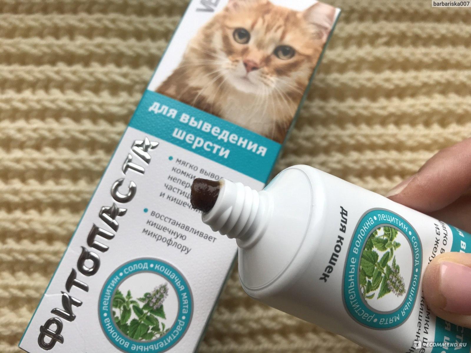 Как вывести шерсть из желудка и кишечника кошки