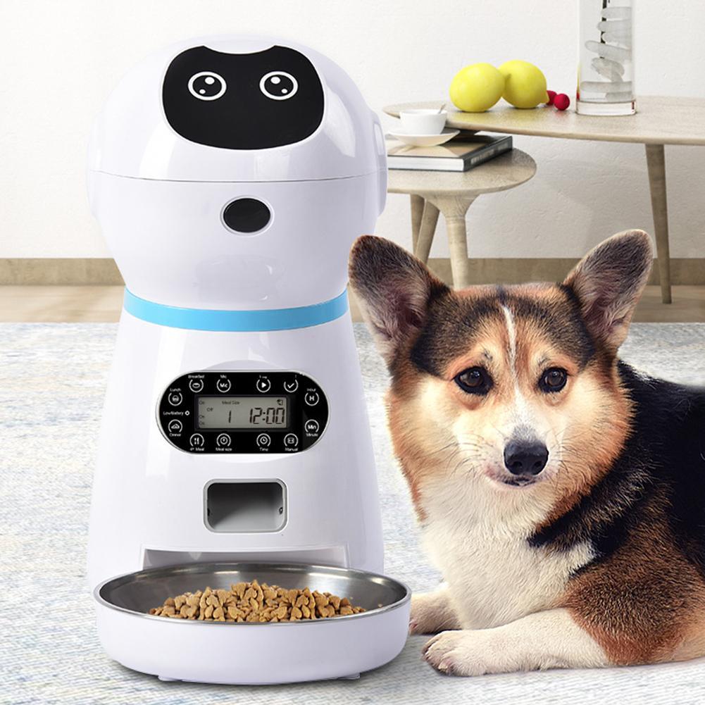 Автокормушка для собак с таймером: виды и описание
