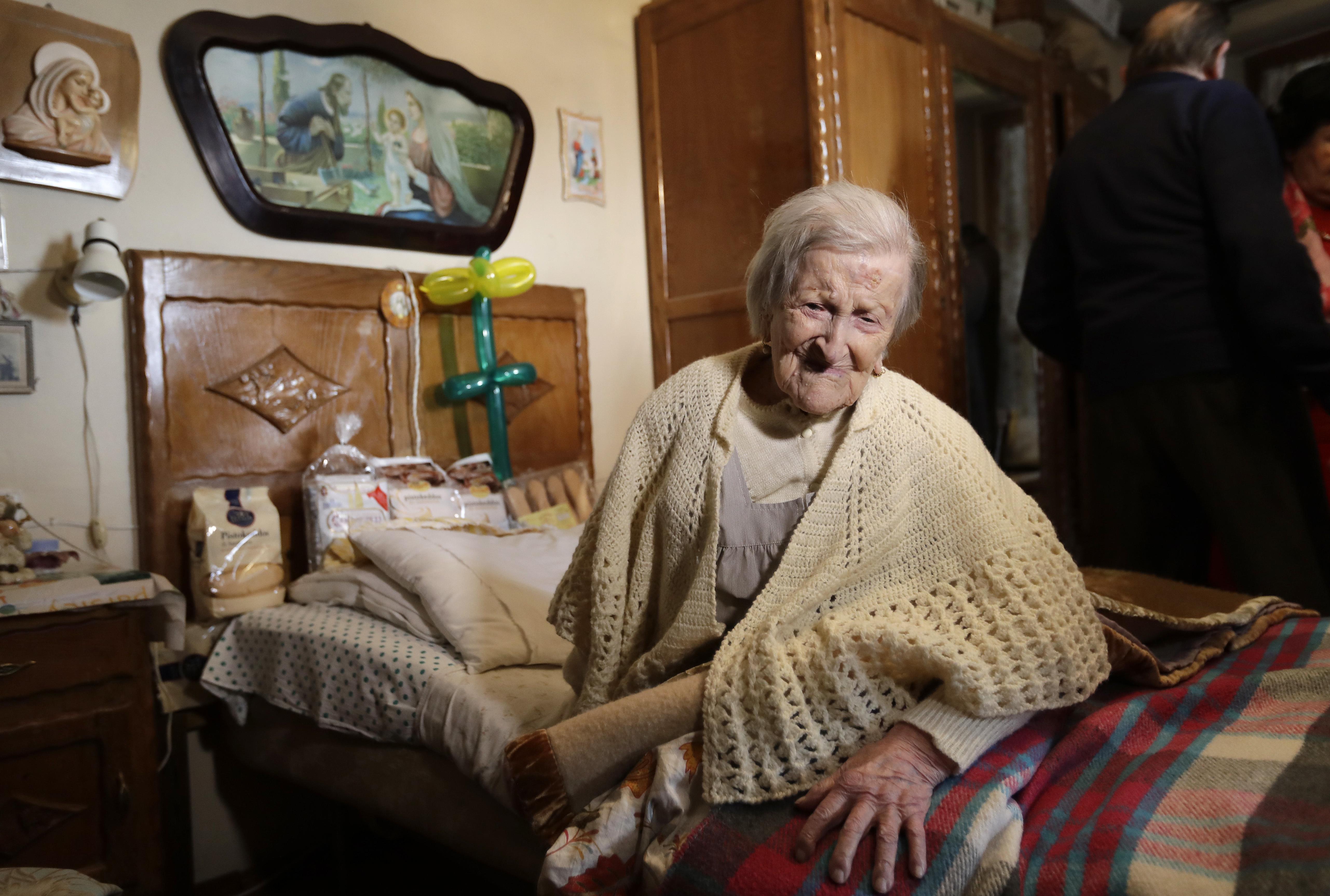 Самая старая собака в мире: сколько она прожила