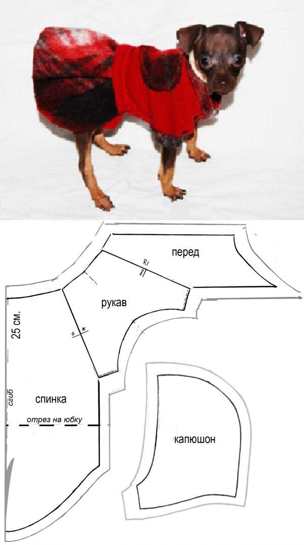 Одежда для собак своими руками: выкройки