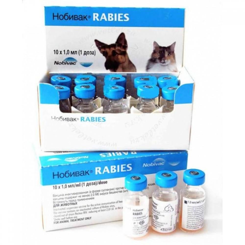 Комплексная прививка для кошек