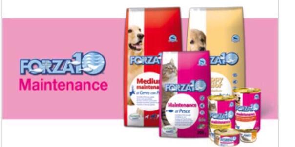 Forza 10: корм для собак, описание и особенности