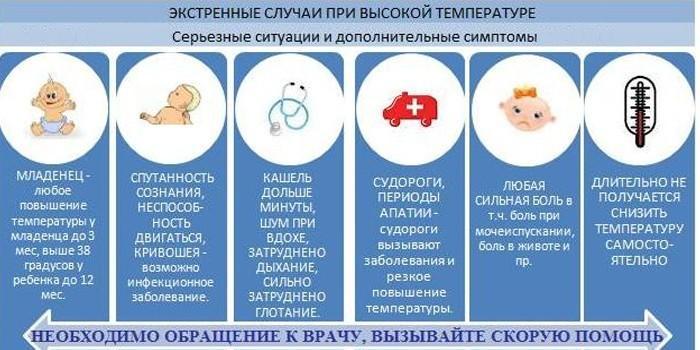 Гипотиреоз у собак: симптомы и лечение