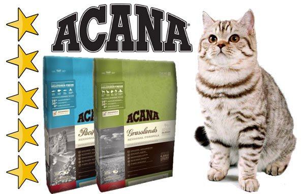 Акана: корм для кошек и котят, состав, дозировка