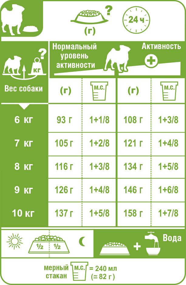 Чем кормить мопса: список продуктов, какой лучше
