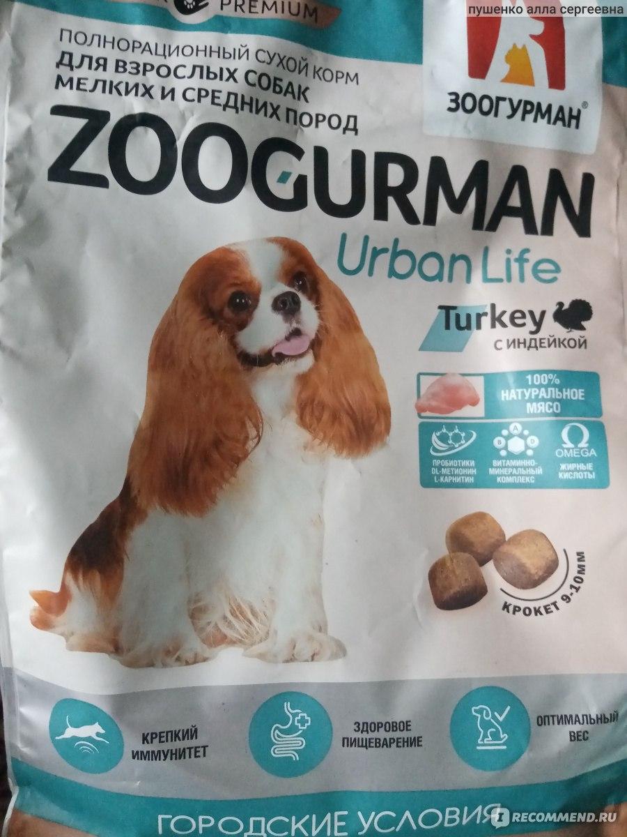 Категории кормов для собак