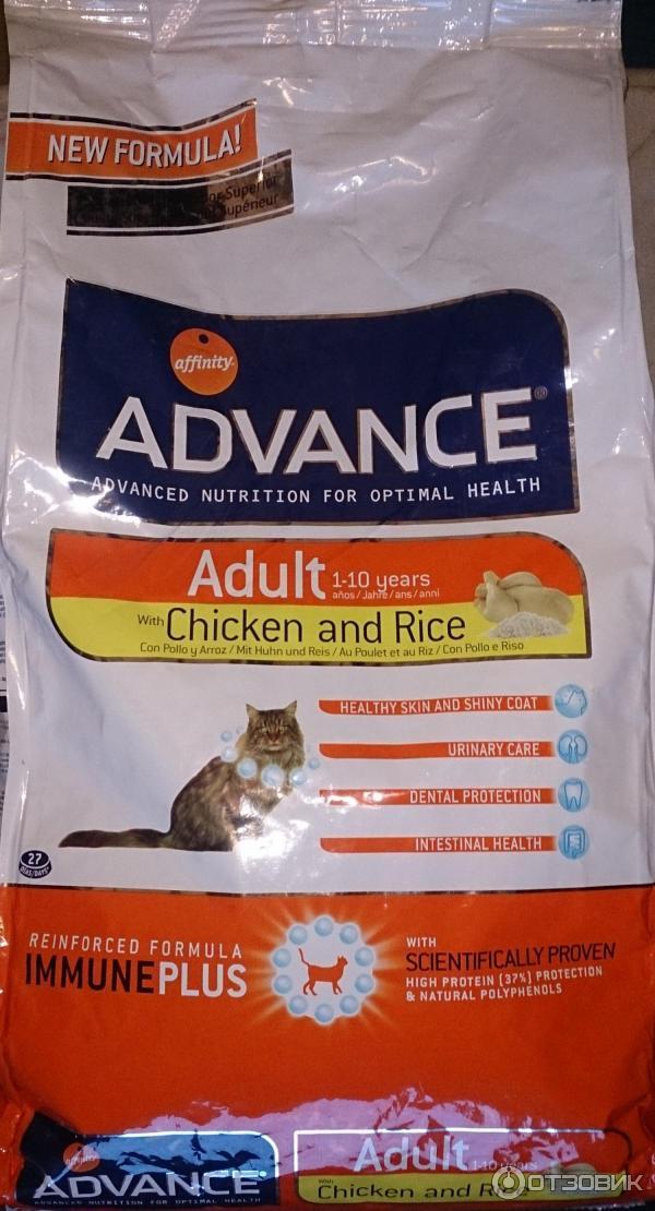Обзор корма для кошек Advance