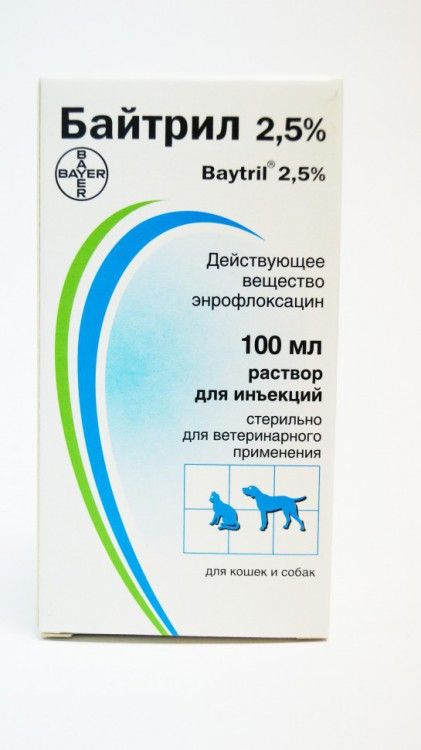 Байтрил: описание препарата и схема лечения кошек