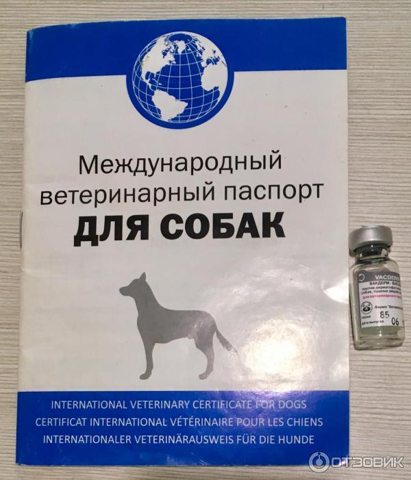 Вакдерм для кошек и котов