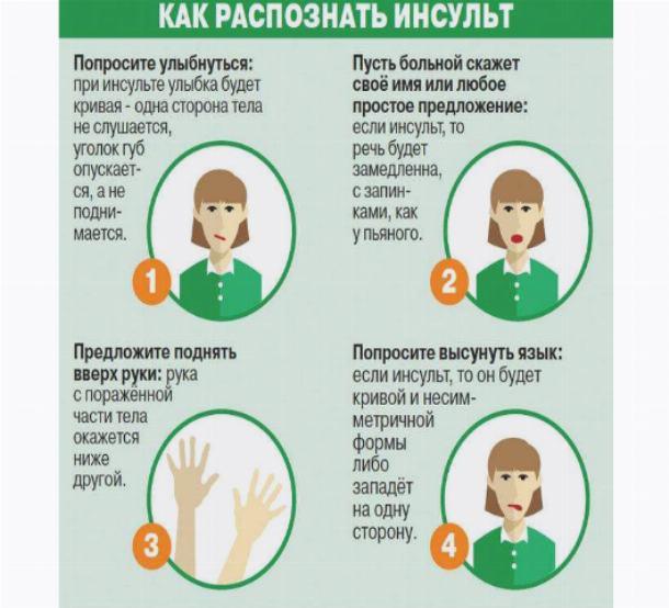 Инсульт у кошек и котов: симптомы и лечение