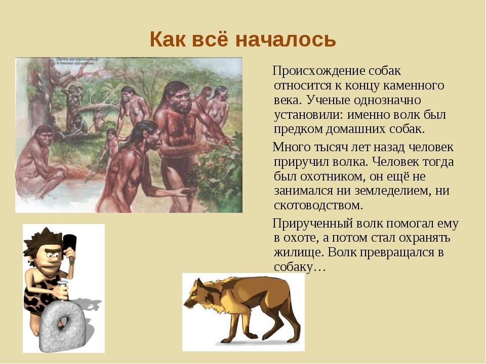 От кого произошли собаки на земле: история