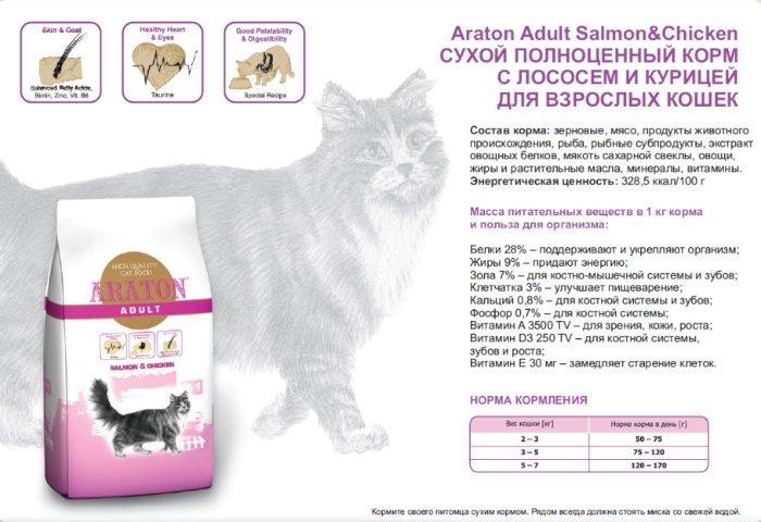 Корма для кошек с больными суставами: что можно и нельзя