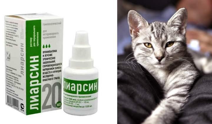 Инструкция по применению Лиарсина для кошек
