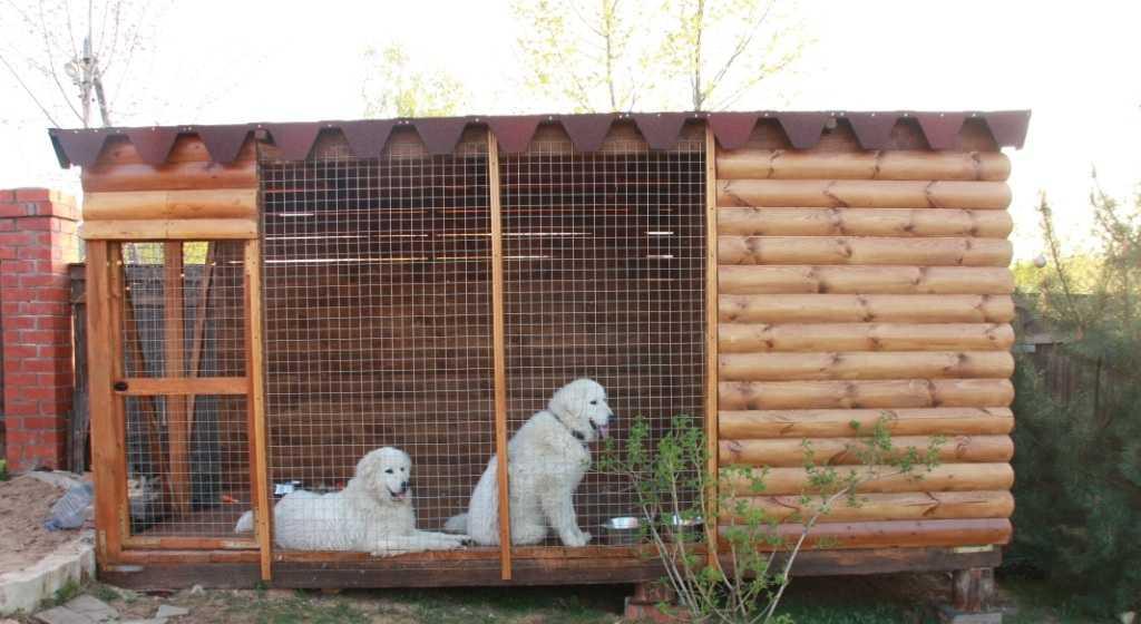 Вольер для собаки своими руками: чертежи и размеры