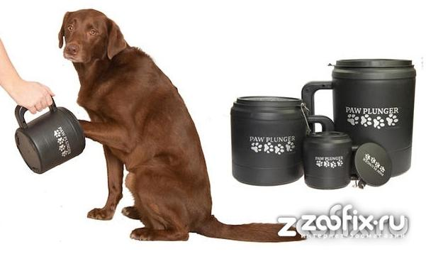 Лапомойка для собак: какую выбрать
