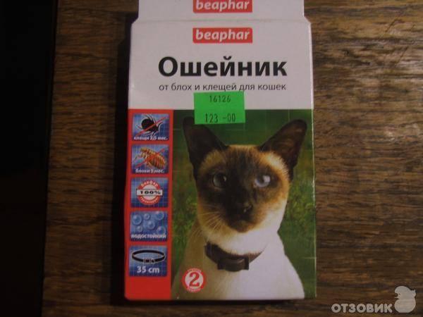 Ошейники от блох и клещей для кошек