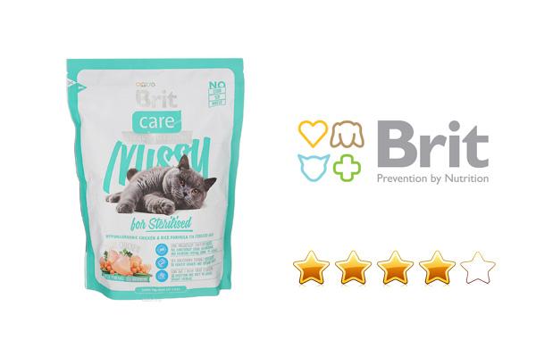 Сухие корма для кошек Brit: сравнение линеек Premium и Care