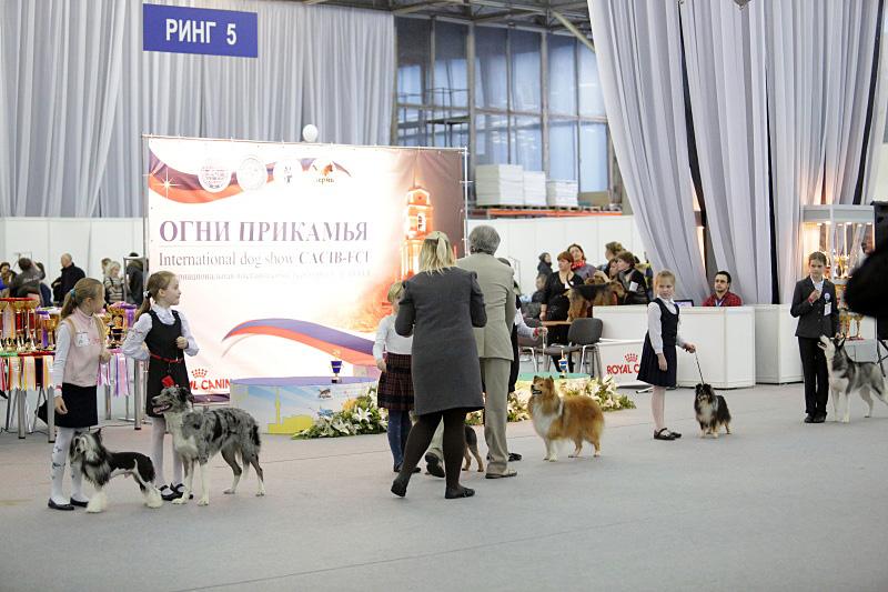 Интернациональная выставка собак