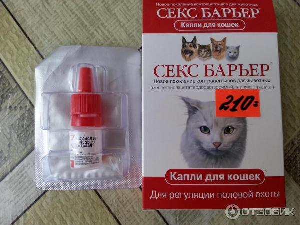 Капли для кошек от гуляния, таблетки, антисекс