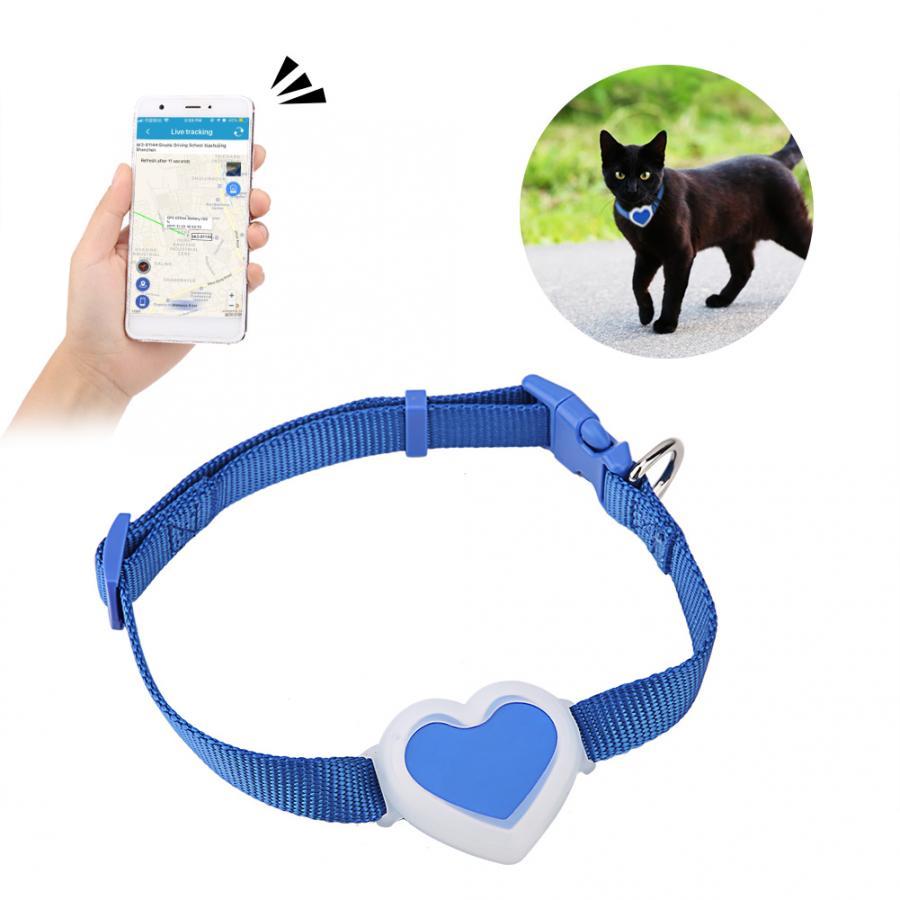 GPS ошейник для кошек (трекер): какой самый маленький