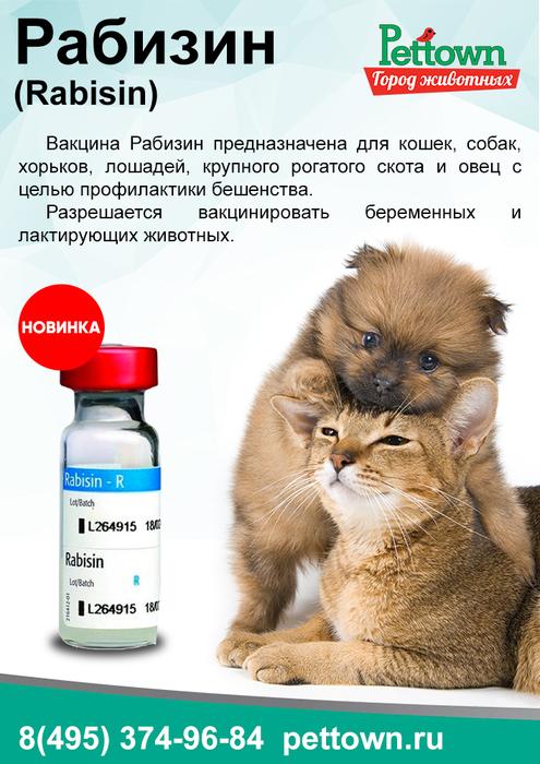 Рабизин для кошек