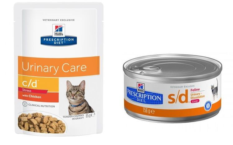 Чем кормить кошку при почечных заболеваниях