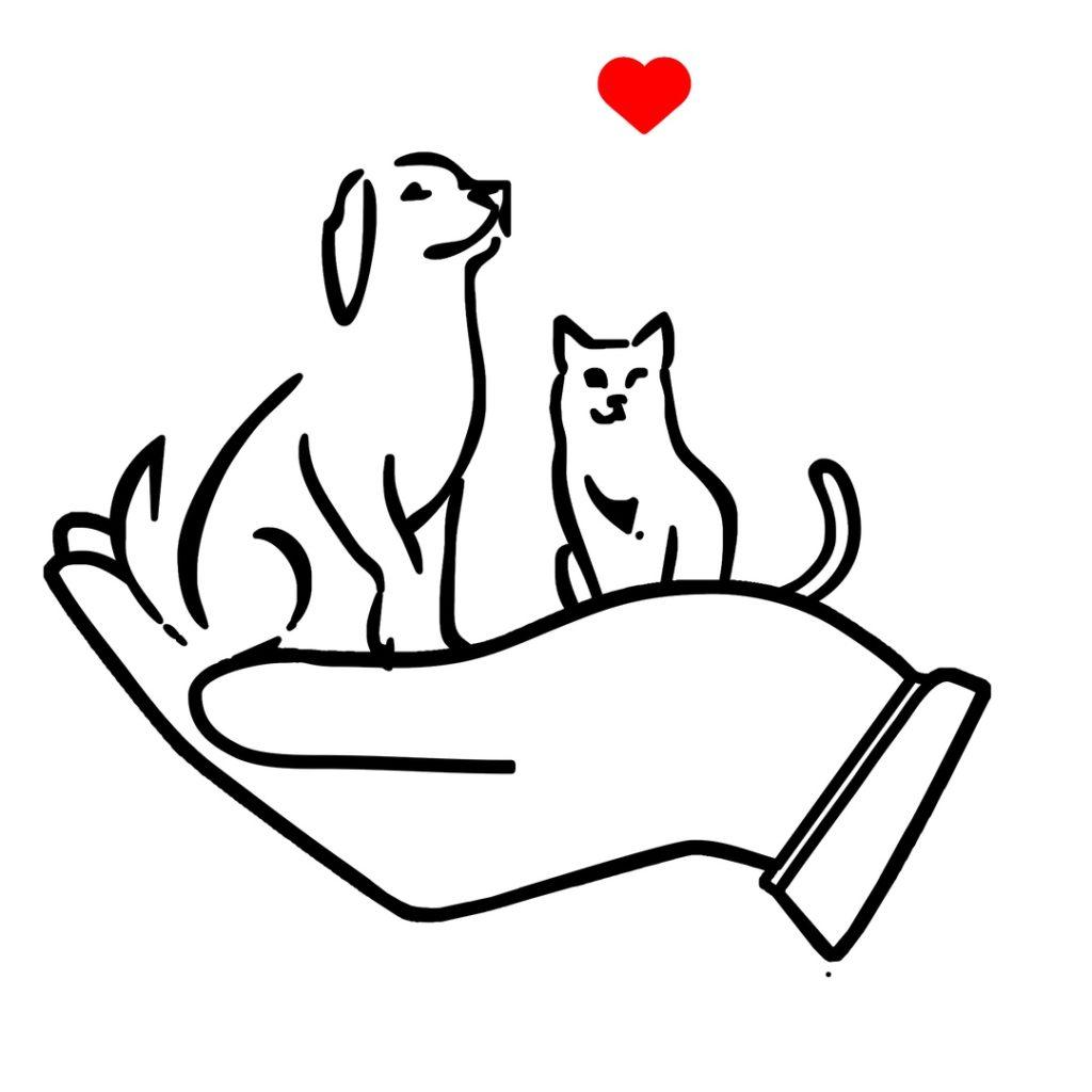 Социальная сеть для помощи кошкам