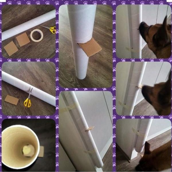 Игрушки для собак своими руками в домашних условиях