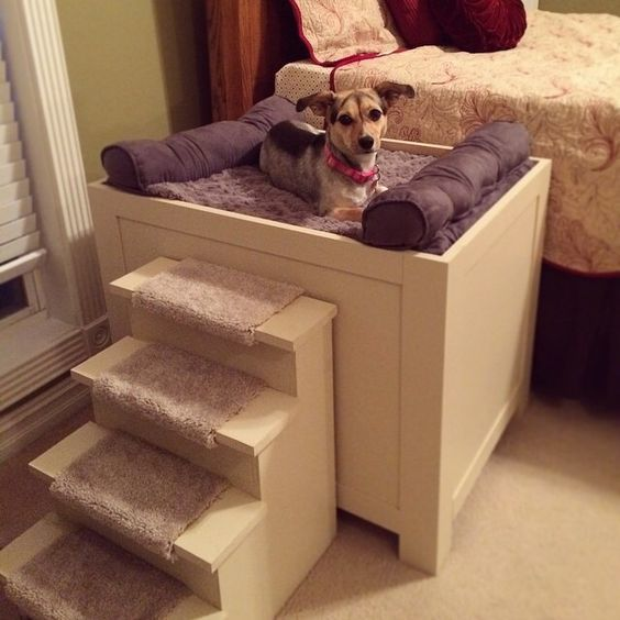 Ступеньки для собак мелких пород на диван