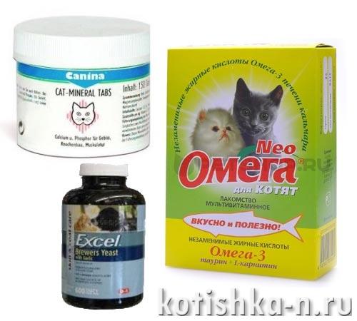 Как выбрать витамины для кошек и котов?