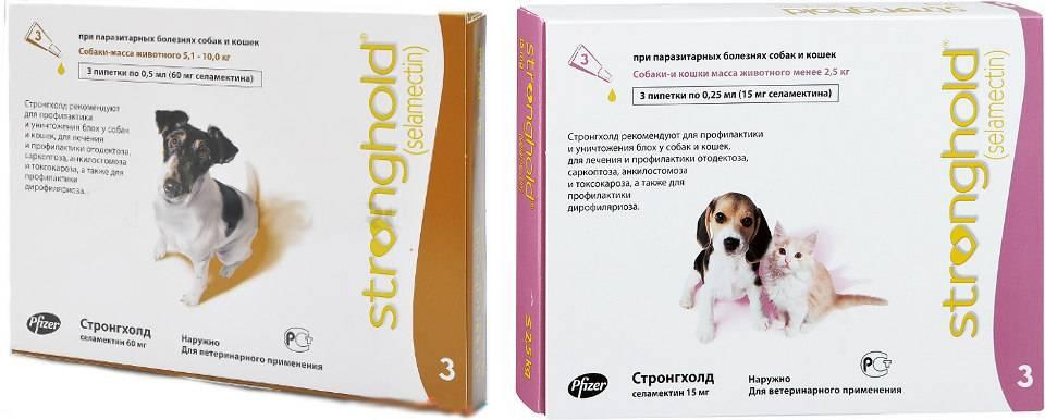Стронгхолд для собак