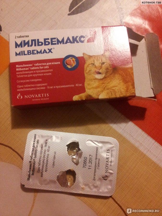 Мильбемакс для кошек и котов