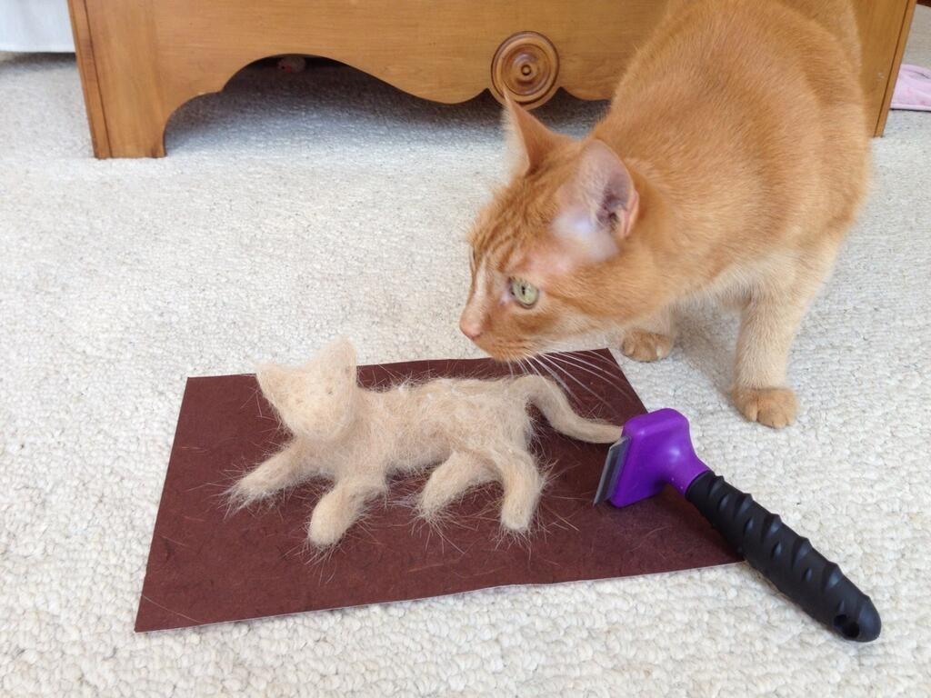 Линька у кошки: бороться или смириться