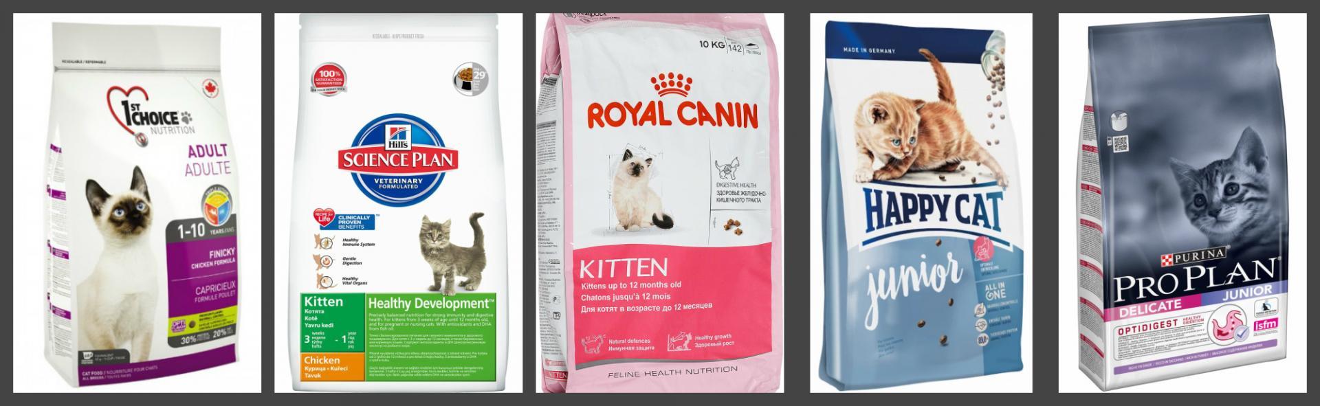 Чем кормить котенка 2 месяца: сколько раз в день и какой пищей