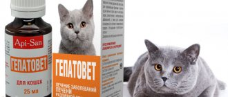 Катозал для кошек и котов