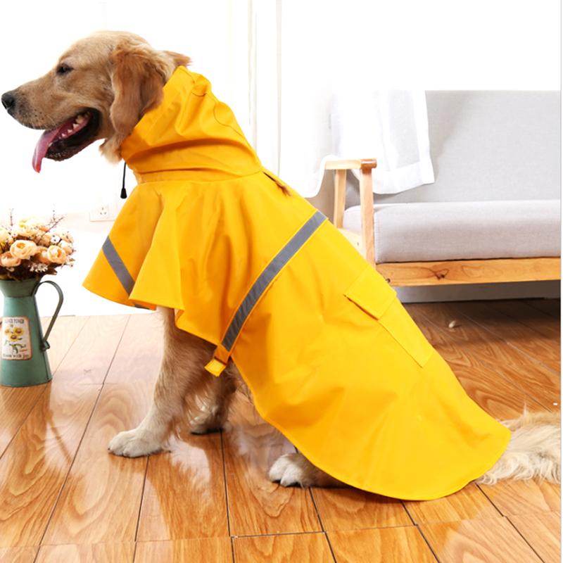 Дождевик для собаки: виды плащей для всех пород