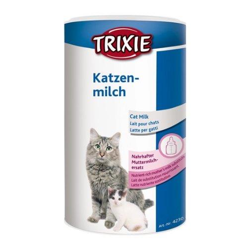 Можно ли кошкам молоко — примеры для новорожденных и котят
