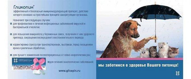 Гликопин для собак