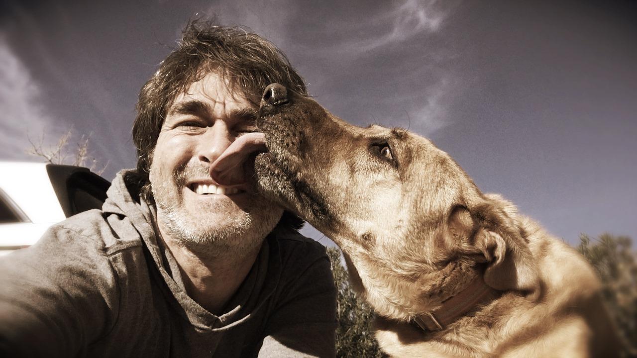 Почему собакам нравятся улыбающиеся люди