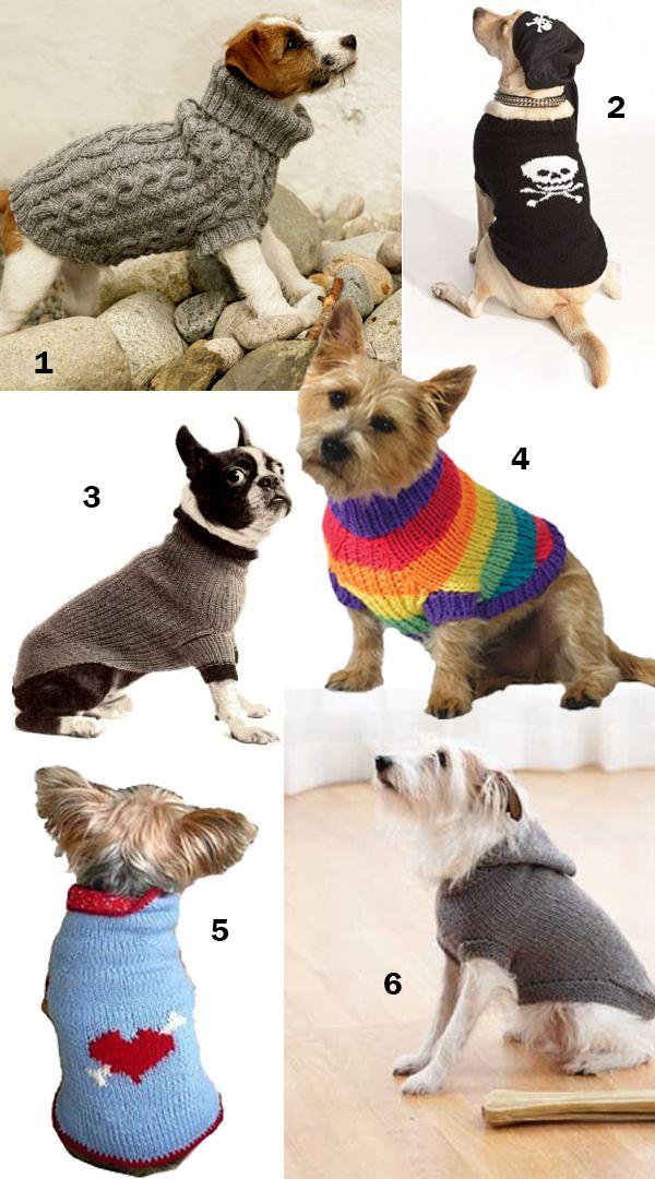 Свитер для собаки: как связать спицами для начинающих