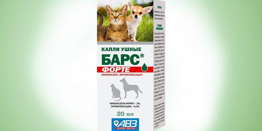 Ушной клещ у кошек: капли, лечение, эффективные препараты